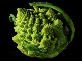 800pxfractal_broccoli